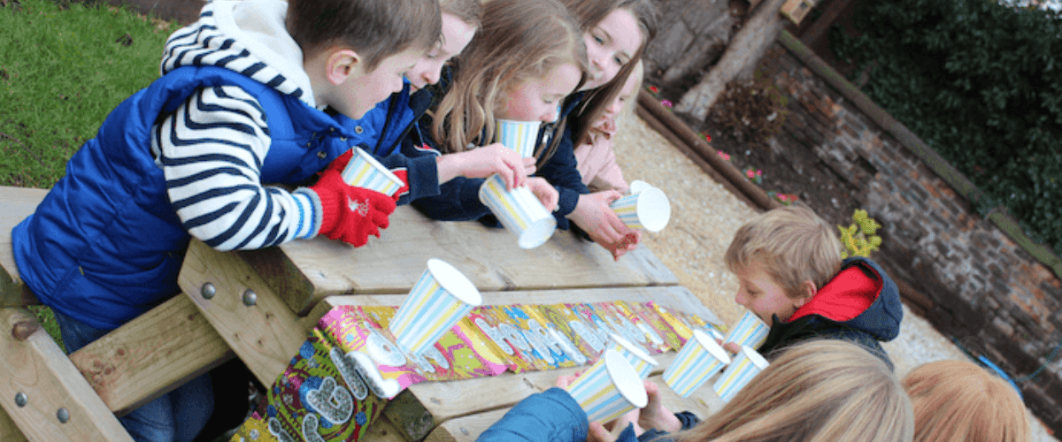 Children's Falconry Parties
