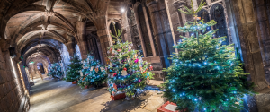 Image showing Christmas Tree Festival at Chester Cathedral